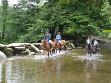 reiten exmoor nationalpark